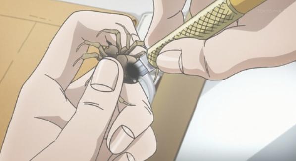 たまたま見つけた蜘蛛をトーンカッターで腹を裂いて殺す岸部露伴