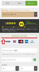 Huluの支払方法の選択画面