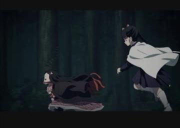 幼児化した禰豆子とそれを捕まえようとするカナヲ